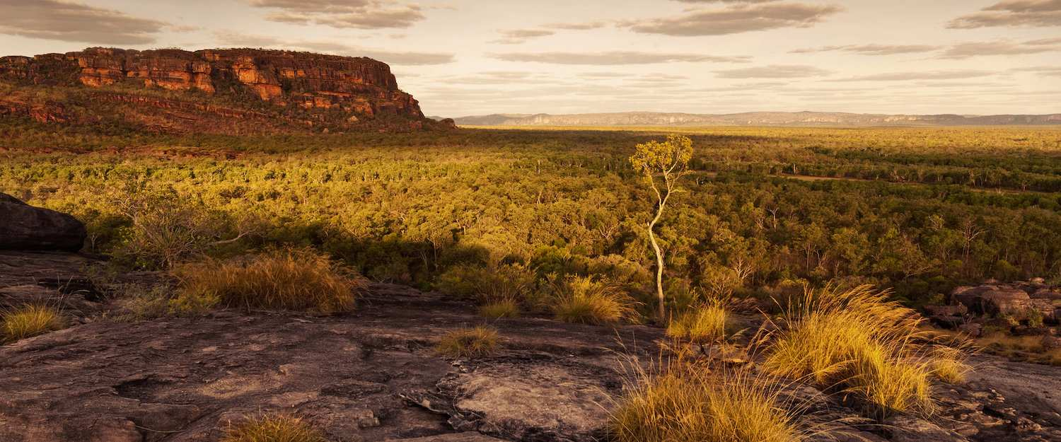 Worth seeing and unique nature awaits you in the Outback.